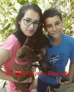 """Promoção """"Eu amo cachorro e o Cineplus Emacite"""" (10)"""