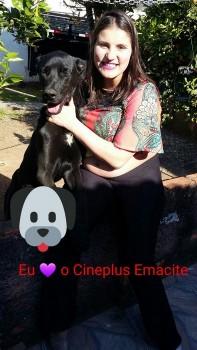 """Promoção """"Eu amo cachorro e o Cineplus Emacite"""" (17)"""