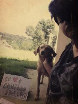 """Promoção """"Eu amo cachorro e o Cineplus Emacite"""" (29)"""