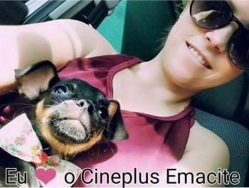 """Promoção """"Eu amo cachorro e o Cineplus Emacite"""" (7)"""