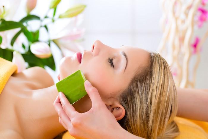 """A babosa, ou Aloe vera, tem propriedades altamente hidratantes e nutritivas. O uso tópico da polpa da folha """"in natura"""" deixa a pele do rosto macia e estimula a produção de colágeno / GB Imagem"""